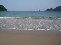 きれいな春の佐津海岸