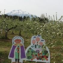 <周辺・景観>弘前りんごの花まつり
