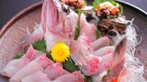 【刺身好き必見】当館のある漁師町間人(たいざ)の、間人漁港であがる新鮮な地魚を姿造りでどうぞ♪