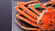 【幻の間人蟹】緑色のタグはブランド蟹の王様の証。茹でガニで素材の味を堪能する。