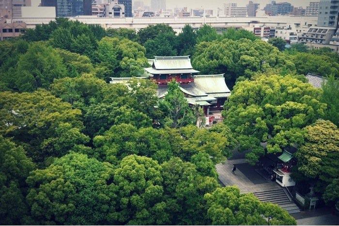 部屋から見る富岡八幡宮