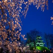 **高田城/水堀に映える夜桜の幻想的な姿から、日本三大夜桜の一つにも数えられています。