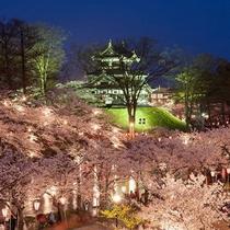*日本三大夜桜高田城/出店も並び多くの人でにぎわう越後の春の風物詩!(当館より車で約40分)