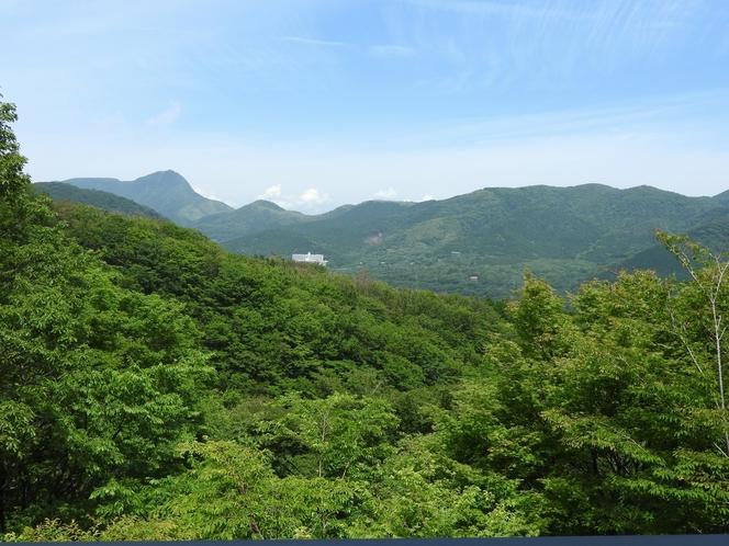 ロビーからの眺め 「箱根外輪山」