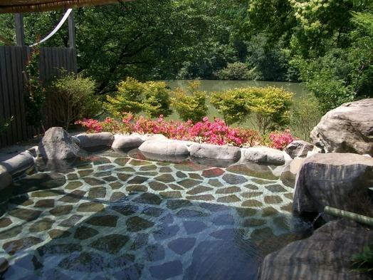 【日帰り】 お部屋+スタンダード会席料理+温泉入浴プラン♪ 風呂付客室