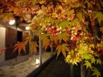 紅葉の季節もみじが綺麗 家族湯外観