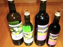 今人気の熊本ワインございます。