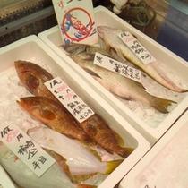 *【鮮魚】自分で選べる♪新鮮な海の恵み。