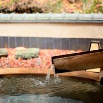 露天風呂の周りは、色とりどりの葉っぱが敷き詰められた絨毯みたい!
