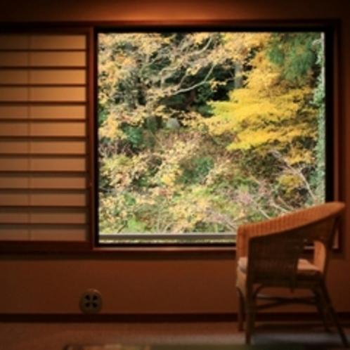 客室からみる庭は、毎日色を変え、その時の顔をします。