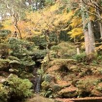 山の自然そのものをいかした庭は、ハッと息をのむような美しさ。