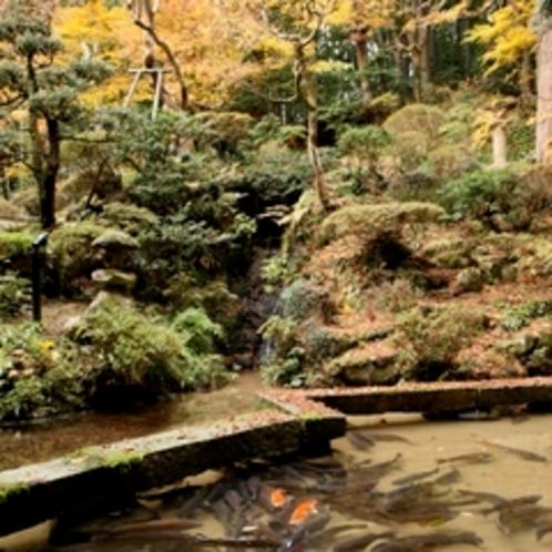 ずっと見ていたくなる、季節の移ろい。心が落ち着く、大自然の色。