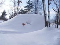 3月11日からの大雪で埋もれたかまくら
