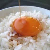 好評の長崎県産米「ながさきのこまる」と雲仙スーパーエッグのたまごかけ!!