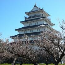 春には桜の名所♪ 休暇村からはお車で約60分!