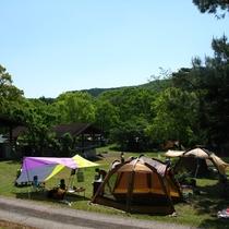 キャンプ場持込フリーサイトは通年営業!満天の星空を満喫♪