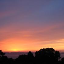 ロビー前から見る橘湾の夕陽