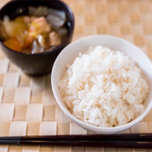 石川県小松市の環境王国で育てられた自然に優しい特別栽培米コシヒカリ