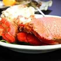 【あさひ蟹】プレミアム食材をご堪能あれ☆