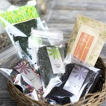 自家栽培のお茶をお土産にいかがですか♪