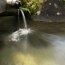 天然温泉掛け流し◎やわらかくてトロトロの無色透明、美肌の湯。