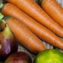 自家農園で大切に栽培した食材を使っています。