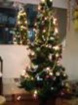 クリスマスツリー(モバイル用).jpg