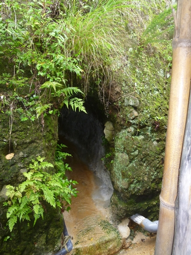 大洞窟風呂の出口はワイルド