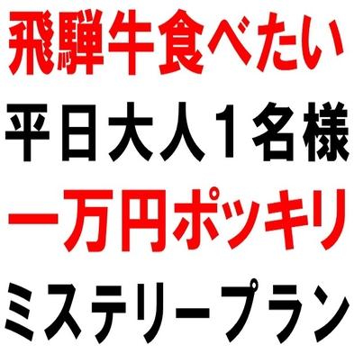 必ず飛騨牛食べれます!大人一人様平日1万円ポッキリ!ご夕食おまかせミステリープラン