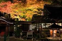 紅葉時の温泉寺