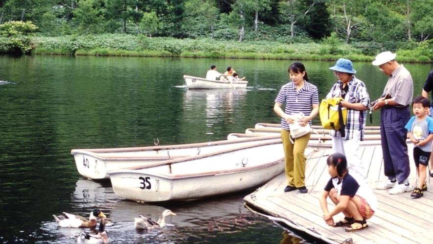 木戸池貸しボート
