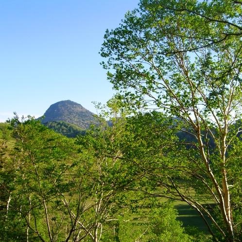 春の訪れとともに新緑の笠岳が楽しめます