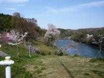 広瀬町のあたりの矢作川