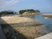 海(干潮時)砂浜への出入り口が1か所なので、ワンちゃんも安心して遊べます。