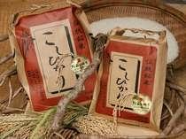 【販売中】阿蘇の四季農園産の新米コシヒカリ