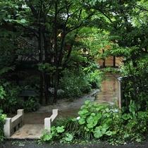 天気の良い日は中庭をお散歩が気持ち良いです。