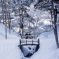 「冬の景色」どっぷりと冬を感じる