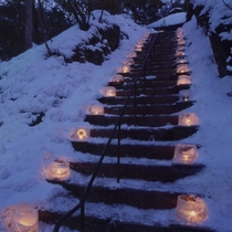 「冬の景色」ライトアップで幻想的に