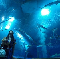アクアスの海底トンネル
