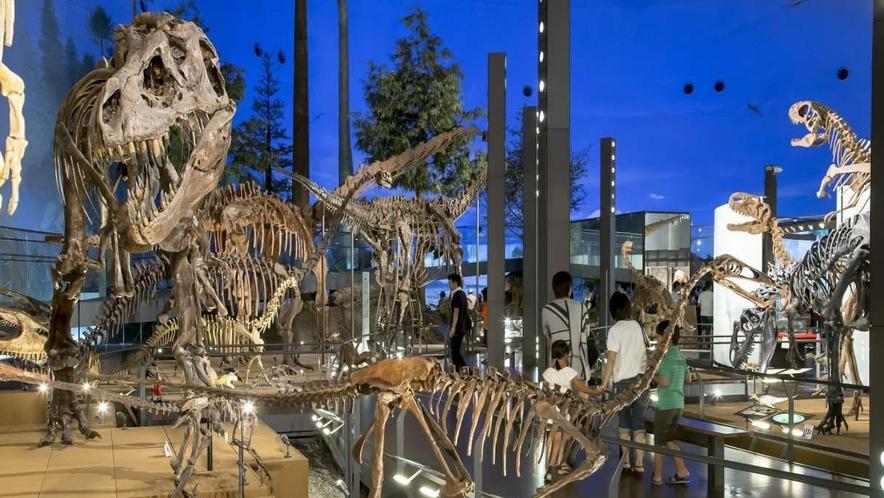 ●福井県立恐竜博物館