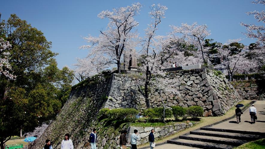 *周辺観光:城山の石垣と桜