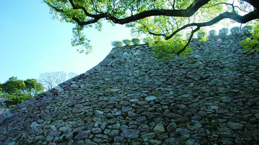 *周辺観光:千人殺しの石垣(城山)