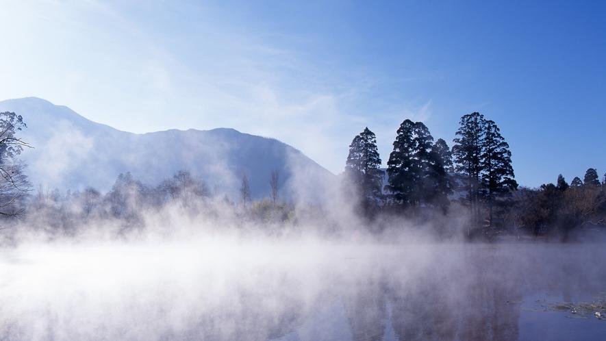 【景観】金鱗湖