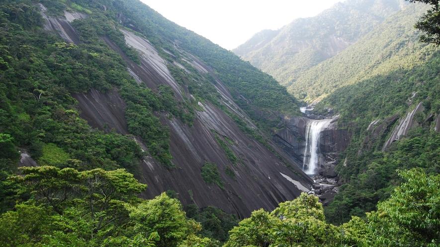 *【周辺】千尋の滝