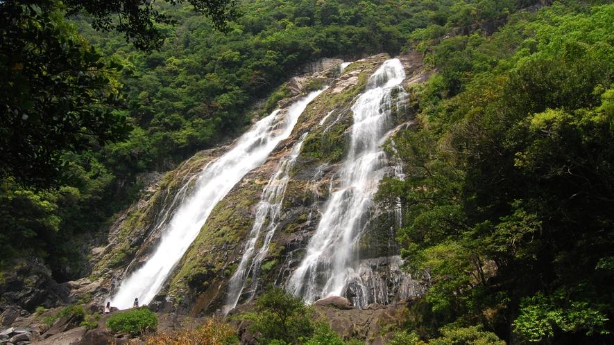*【周辺】大川の滝