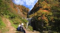 【安の滝】白いすだれ状の滝の流れが新緑や紅葉に映え、訪れる人に感動を与えます。