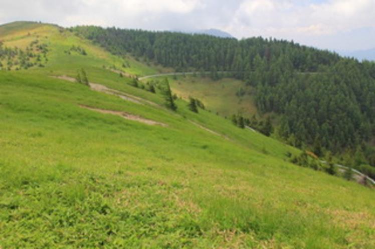 美ヶ原高原の写真