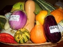 いろいろ地元のお野菜
