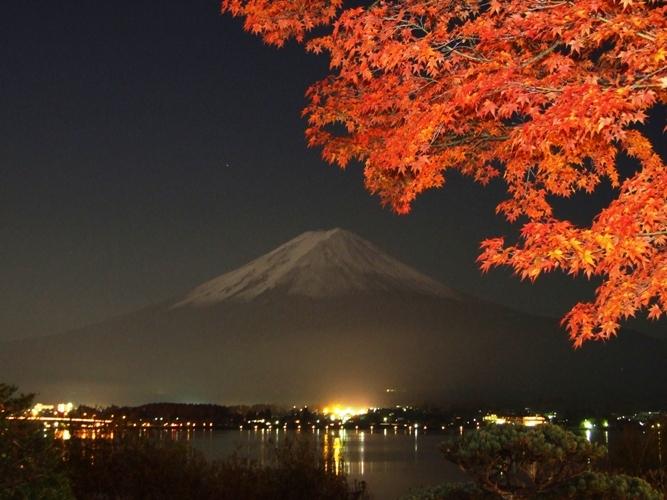 夜の紅葉と富士山