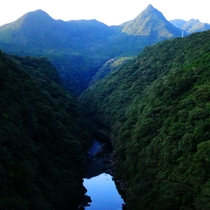 自然豊かな屋久島にはおすすめスポットがたくさんあります☆